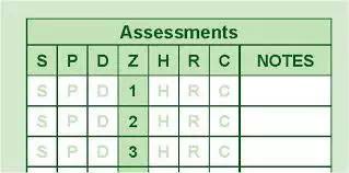 新州路考评分标准解析